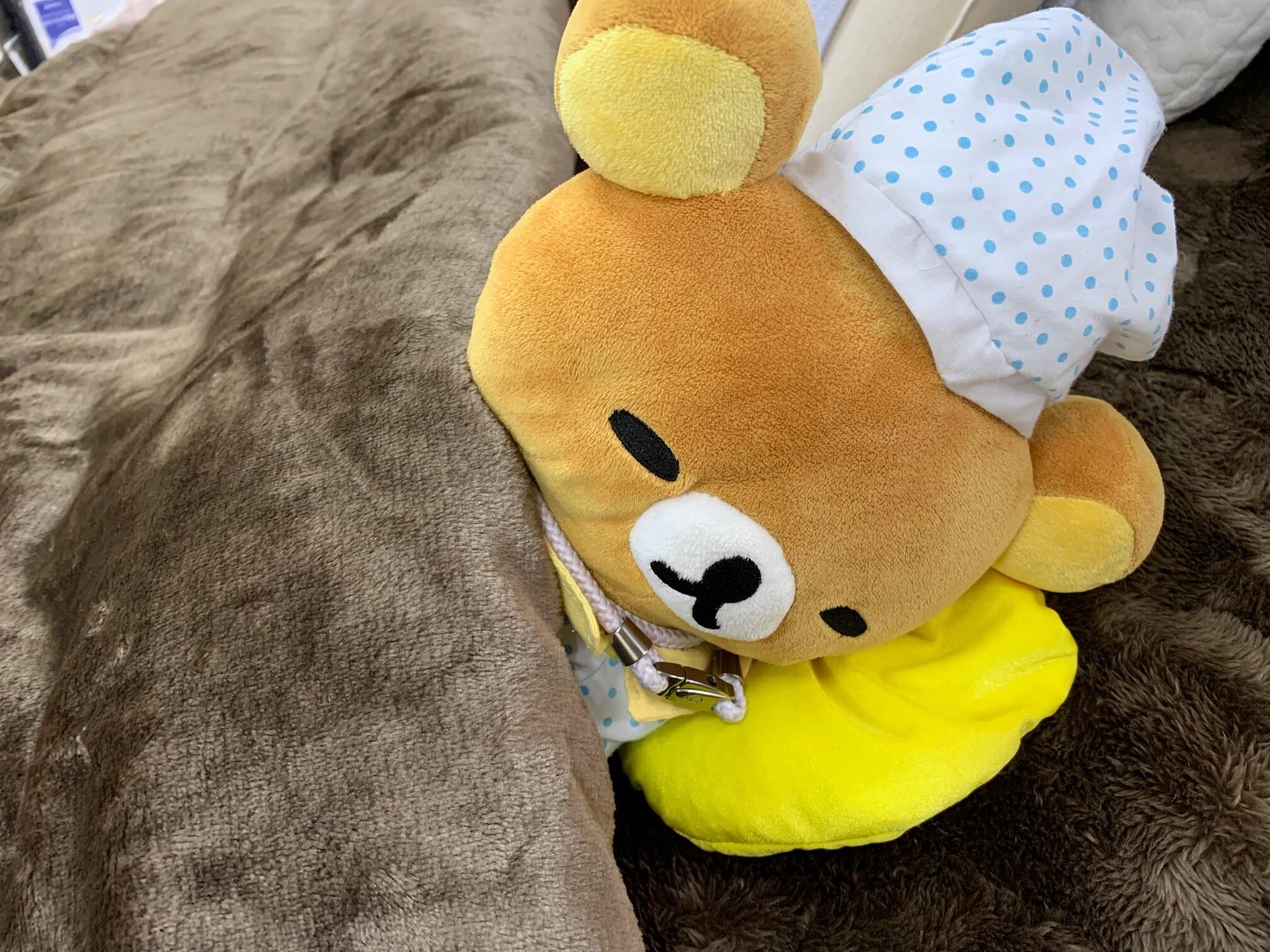 くま毛布.jpg