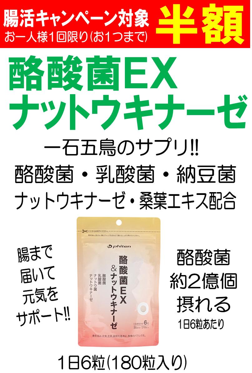 酪酸菌EX.png