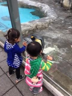 動物園ことり.JPG